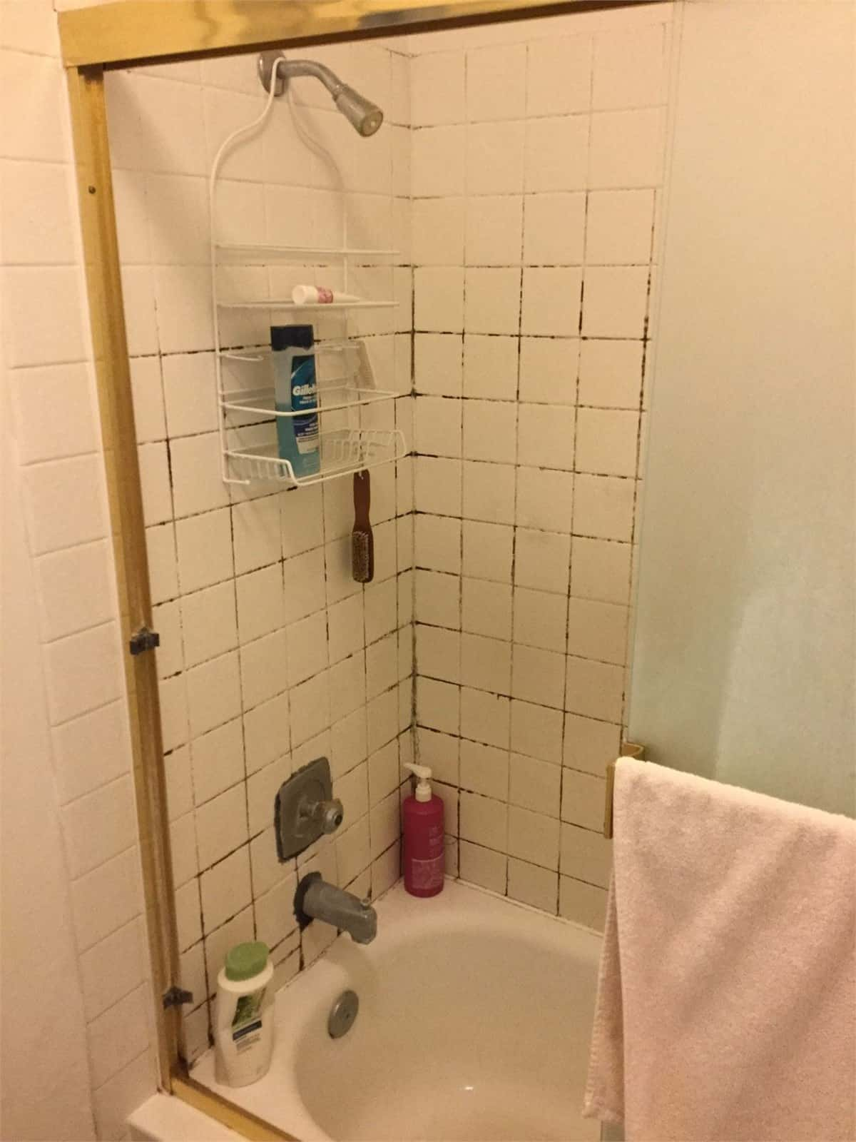 Tub to shower conversion - before 6